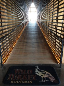 Wild Turkey Cathedral